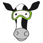 Ride_and_Cow