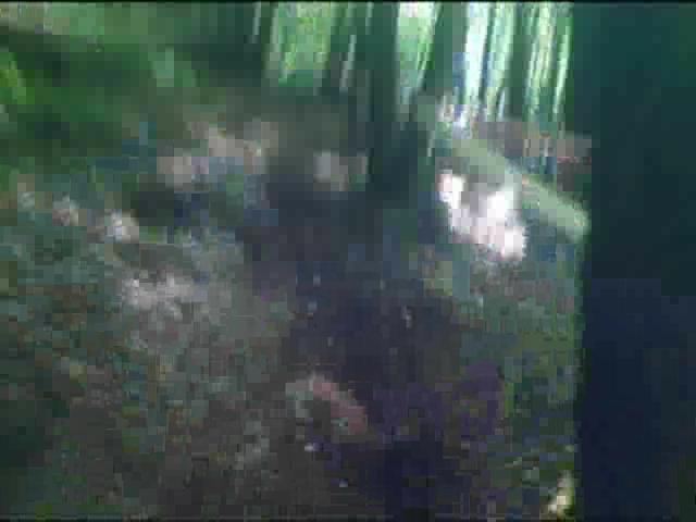 mine cam videoer trapezium