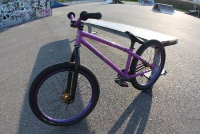 Dobermann bikes : Pinsher