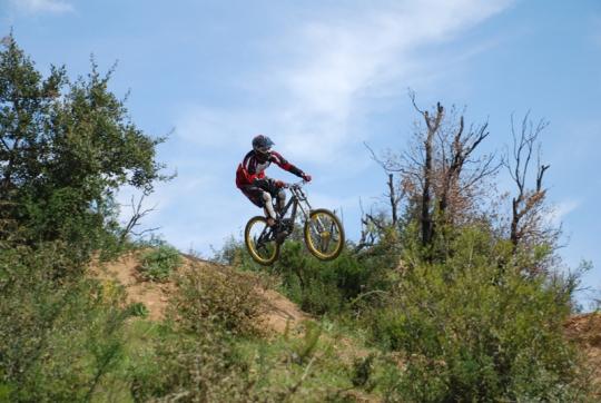 weeliz drop in action